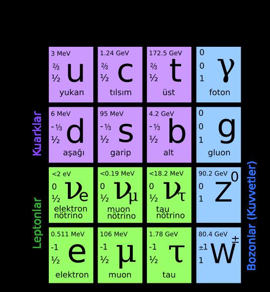 standard_model_temel_parcaciklari