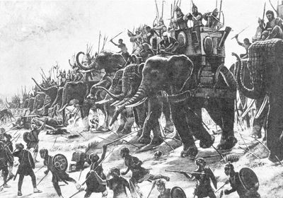 war-elephants
